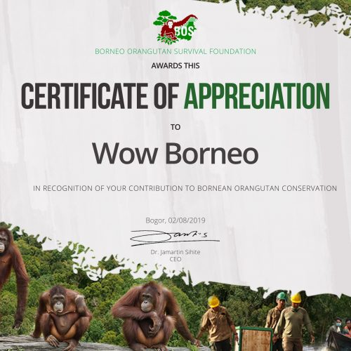 Wow Borneo (BOSF)-1